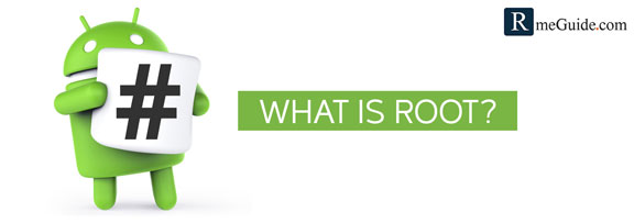 What Is Root